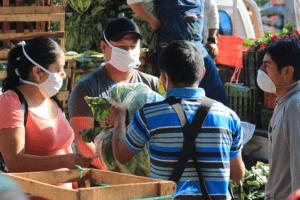 unemployment insurance guatemala